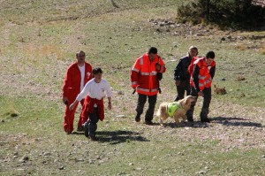 els tres pins, grup de rescat amb gossos de creu roja